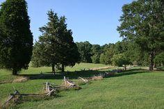 Surrender Field, Yorktown, VA  I loved going to the battlefields when I lived in Yorktown