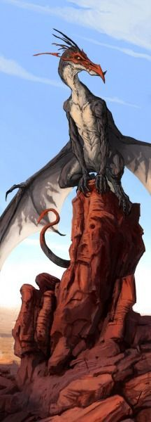 I like dragons.: