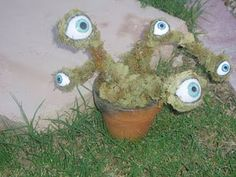 Labyrinth Inspired Eyeball Plant.  Labyrinth is one of my all time favorite movies!  I seriously still know it all by heart.   It was such a part of my childhood.. ahh fond memories.    So at the beginning when Sara enters the labyrinth the walls have these cool eyeball moss plants growing out of them. I wanted a potted version for my witches garden.