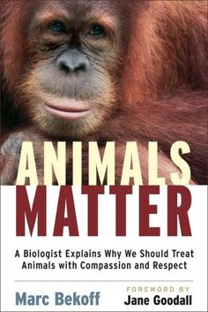 Animals Matter • Eng