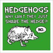I <3 Hedgehogs