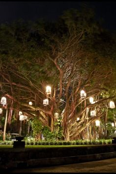 The entrance to Le Tousserok Hotel in Mauritius. So hard to light the outdoors in a classy way. This looks fantastic.
