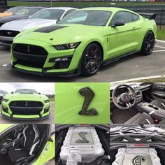 2020 Ford Mustang Shelby GT 500 in Kermit the Frog Green – Sport Car News Ford Mustang Shelby Gt, Shelby Gt 500, 2015 Ford Mustang, Mustang Cobra, Ford Gt, Kermit, Green Mustang, Best Muscle Cars, Gt500