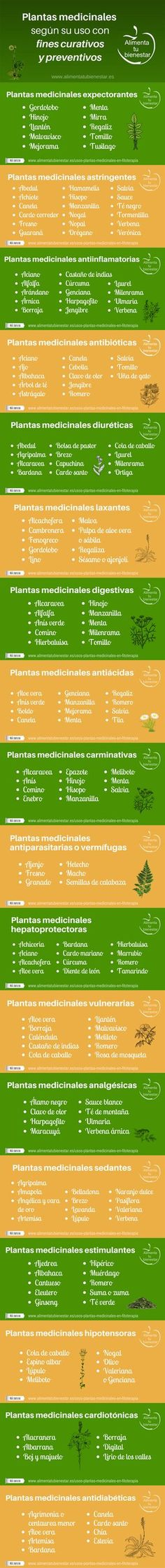 Essential Oils Natural Remedies: The Complete A-Z Reference of Essential Oils for Health and Healing Ayurveda, Herbal Remedies, Home Remedies, Natural Remedies, Health And Nutrition, Health And Wellness, Health Fitness, Medicinal Plants, Alternative Medicine
