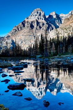 Near Lake O'Hara in Yoho National Park, British Columbia, Canada