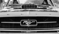 MUST READ : The origin of Ford Mustang's name history...