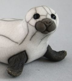 Seal Pup on Flippers