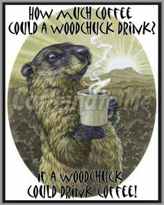 How much coffee could a woodchuck drink? Coffee Zone, Coffee Talk, Coffee Is Life, I Love Coffee, Coffee Break, My Coffee, Coffee Drinks, Coffee Shop, Coffee Carts