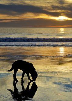 Stinton Beach, California