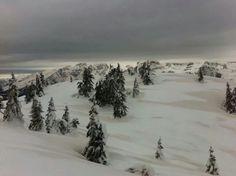 sabbia del deserto e neve della Paganella .....che magia!