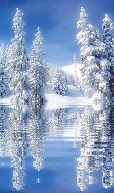 #Winter reflection.... ~ A collection of CLICK ON THE PICTURE (#gif) AN WATCH IT COME TO LIFE. *.♡♥♡♥Love★it http://www.roanokemyhomesweethome.com/
