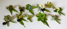 rustic boutonnieres using a variety of elements: scabiosa pods, cymbidium orchids, ranunculus, fiddlehead fern, succulents, thistle, dogwood, geranium, star eucalyptus, hellebore, bunny tail grass and umbrella fern wrapped in rustic twine