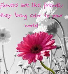 flowers quotes pinterest