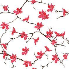 Papel de Parede Floral 1690