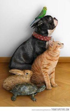 Ohhh!!! yo quiero una familia así