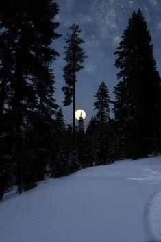 delicatuscii - — Winter sky By Andrew Suliteanu Winter Sky, Winter Night, Beautiful Moon, Beautiful World, Winter Schnee, Moon Pictures, Night Aesthetic, Snow Scenes, Winter Beauty