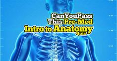 Anatomy is one of the first obstacles a pre-med as well as medical students face in order to gain the centuries-old rite of passage that is gross anatomy. The lab portion of gross anatomy is where students will see a dead body. But in order to do so, they'll need to understand some basics principles. Are you ready for the challenge? Test your knowledge here with this quiz! Gross Anatomy, Medical Students, Trivia, Quizzes, Gain, Knowledge, Challenges, Consciousness, Quizes
