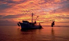 Shrimp Boat at Sunset