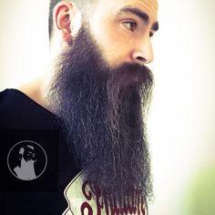 Bald With Beard, Long Beards, Epic Beard, Awesome Beards, Moustache, Bearded Men, That Look, Celebrities, Beards