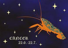 Cancer ♋️ - Love Tarot Reading October 2017 - New beginnings, Marriage, Fun Tarot Horoscope, Daily Horoscope, Have A Great Thursday, Love Tarot Reading, Virgo And Cancer, July 6th, October, Psychic Readings, New Beginnings
