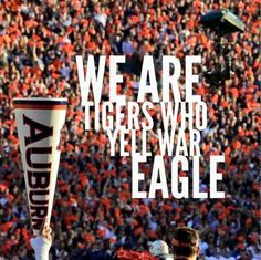 We are tigers who yell War Eagle!