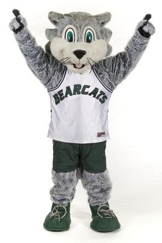 Binghamton University's mascot, Baxter the Bearcat http://www.payscale.com/research/US/School=SUNY_-_Binghamton_University/Salary