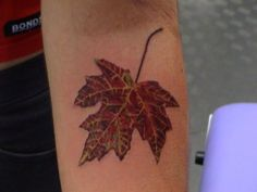 Leaf tattoos can represent one's journey and the cycle of life. Learn about leaf tattoos, leaf tattoo meanings, leaf tattoo ideas, and view dozens of leaf tattoo designs. First Tattoo, Get A Tattoo, Tattoo Shop, Beautiful Tattoos, Cool Tattoos, Leaf Tattoos, Tree Tattoos, Canada Tattoo, Tattoo Gallery