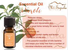 Reduce Stretch Marks, Home Remedies For Acne, Reduce Stress, Aromatherapy, Essential Oils, Pure Products, Essential Oil Uses, Essential Oil Blends
