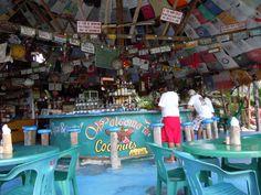 Coconuts, Cozumel Cozumel Mexico, Mexico Vacation, Mexico Travel, Places To Travel, Places To Go, Grill Bar, Disney Fantasy Cruise, Family Cruise, Royal Caribbean Cruise