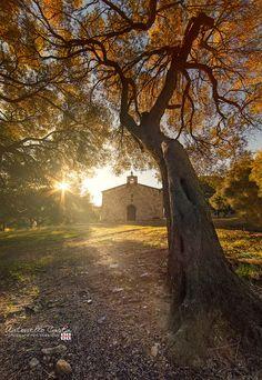 Toward God... by Antonello Carta Fotografo per passione on 500px