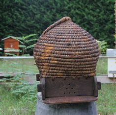 80 year old french bee hive I Love Bees, Birds And The Bees, Buzzy Bee, Buy Honey, Bee Boxes, Bee Skep, Vintage Bee, Bee Art, Save The Bees