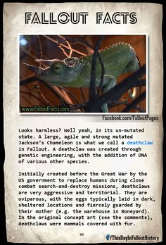 Fallout Facts- I plan on raising my mini-Deathclaw to be my apocalyptic companion. Fallout Lore, Fallout Facts, Fallout Funny, Fallout Rpg, Fallout Cosplay, Fall Out 4, Fallout New Vegas, Post Apocalypse, Bioshock