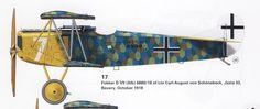 Fokker D-VII Profile
