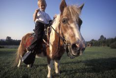 The Sensory Benefits of Hippotherapy - Special-Ism