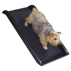 "This essential pet ramp features a no-slip tread and side handles to let your four-legged friend travel with ease.     Product: Pet rampConstruction Material: PlasticColor: BlackFeatures: 300 lb CapacityProtective floor padsLightweightNo-slip treadDimensions:  5.1"" H x 20"" W x 39.5"" D"