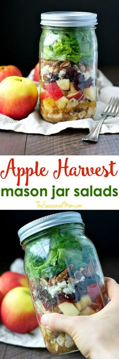 With layers of chicken, apples, cranberries, blue cheese, and pecans, these Apple Harvest Mason Jar Salads with Cider Vinaigrette are an easy and healthy lunch-