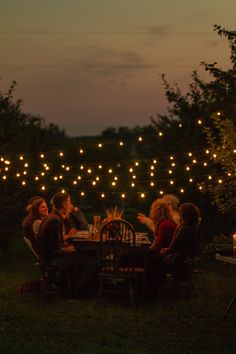 An orchard dinner with string lights!