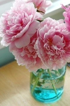 Pink Peonies: Smells like spring cartoulespress