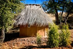 Thatched OutHouse | The Canelo Project