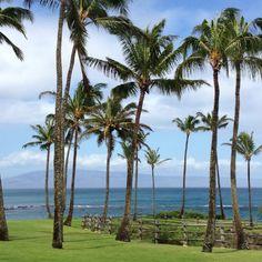 Kapalua, Maui Kapalua Maui, West Maui, Maui Hawaii, Places Ive Been, Spaces, Travel, Beautiful, Viajes, Destinations