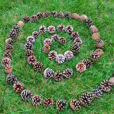 Land art pinecone spiral