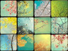 Twelve  Sky Landscape Photographs Photo Set Bright by JudyStalus