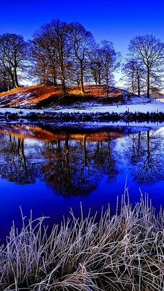 grass_lake_snow_winter