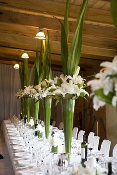 EASY DIY Spectacular Tall Centerpieces of Green Aspidistra Leaves and White Lilies- Leaves Surrounding Inside of Vase with Edges Cut + White Lilies sitting on Edge of Vase (white tulips optional) + Leaves Shooting from Center of Arrangement! Mod Wedding, Wedding Table, Floral Wedding, Wedding Flowers, Wedding Ideas, Wedding Reception, Trendy Wedding, Wedding Bands, Lily Wedding