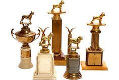 Vintage Dog Show Trophies