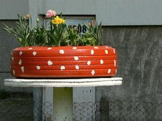Flower-Plant Pot made from old tire and some paint
