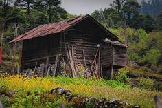 Cabin #cabin #sikkim #beautiful #photooftheday #india #himalaya #photography #photographer #travel #travelphotography #landscape #india_gram #igers #igersindia #nikon #nikond40