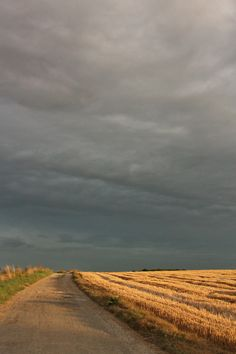 La plaine, ciel d'orage Country Boys, Country Life, Canadian Prairies, Champs, Long Way Home, Looking Up, Paths, Sunrise, Clouds