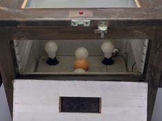 スチル写真用プリンター(内部電球)