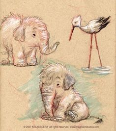 More animal sketches by `imaginism on deviantART
